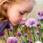Psicologia e olfatto: profumo di donna e di uomo (per chi sa ancora usare il naso)