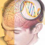 L'ipnosi… il meccanico del cervello